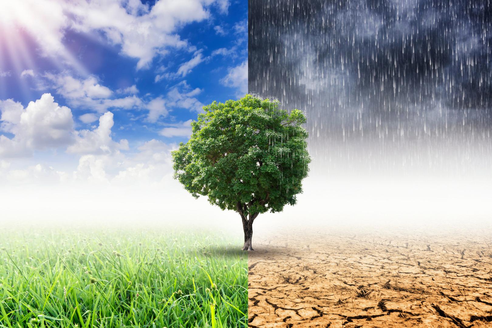 Aanpak klimaatverandering kent geen grenzen